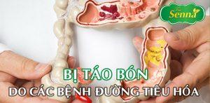 Bị táo bón do các bệnh đường tiêu hóa