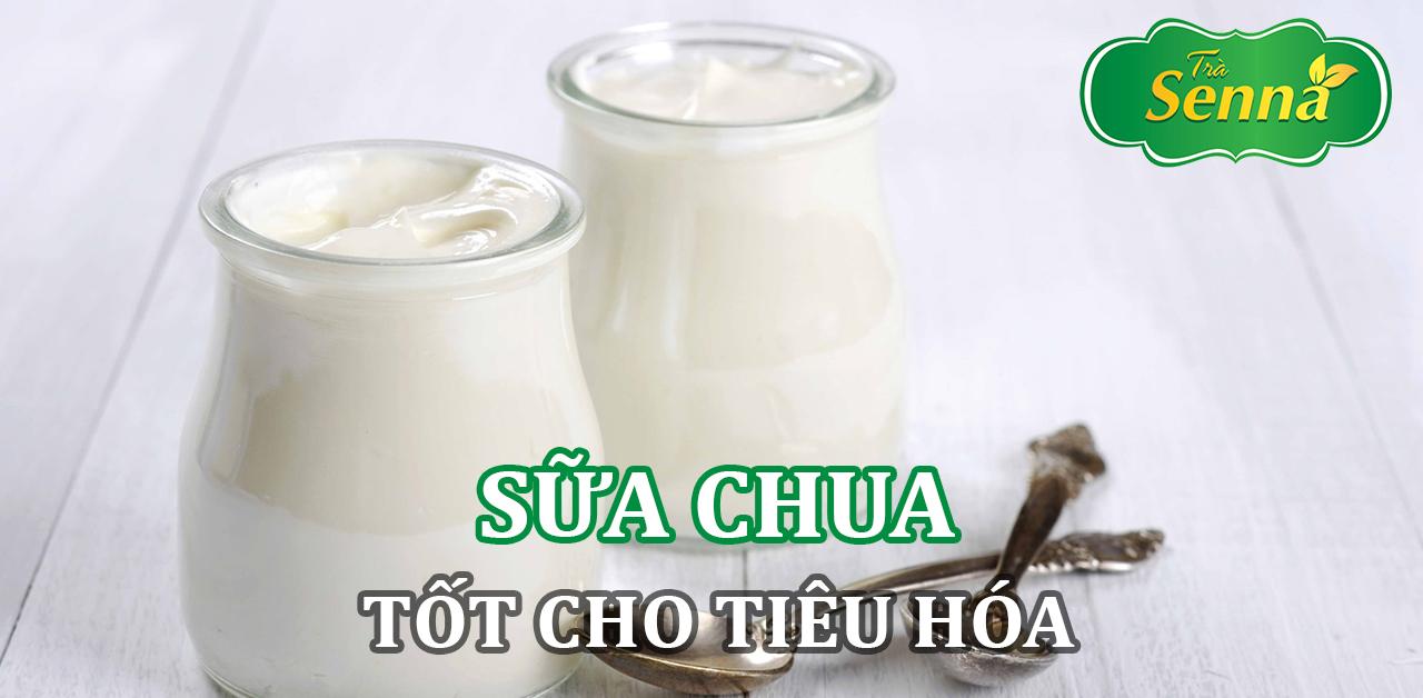 Sữa chua tốt cho tiêu hóa